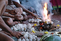 India, Gokarna, 2006. Rice balls and palm leaves are cooked and presented to Hindu gods near the tank, or holy reservoir, in Gokarna.