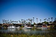 The Ox Bow Marina near Isleton, Calif., August 4, 2009.