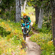Andrew Whiteford gets air through the forest of the Black's Canyon Singletrack off of Teton Pass.