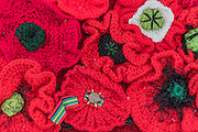 The Pacific Star medal at the centre of one of the poppies - 5000 Poppies, startes as a tribute by Lynn Berry and Margaret Knight to their fathers who fought in WW2 and, with the help of creative Director Phillip Johnson, became a project where over 50000 contributors submitted more than a quarter of a million hand knitted poppies.