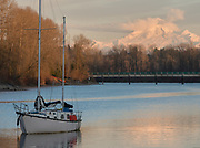 Sailboat on Bedford Channel of the lower Frasier River, Fort Langley, British Columbia.  Mount Baker in Washington state is in the background.