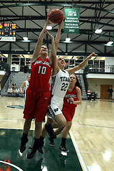 10 January 2015:  Taylor Boardman and Alina Lehocky reach for a rebound during an NCAA women's division 3 CCIW basketball game between the Carthage Reds and the Illinois Wesleyan Titans in Shirk Center, Bloomington IL