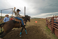 Cowgirl competes in team roping at rodeo in Wilsall Montana