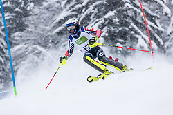 Walsh Thomas C of USA during Slalom race at 2019 World Para Alpine Skiing Championship, on January 23, 2019 in Kranjska Gora, Slovenia. Photo by Matic Ritonja / Sportida