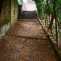Walkway in Boboli Garden, under vines in Florence, Italy