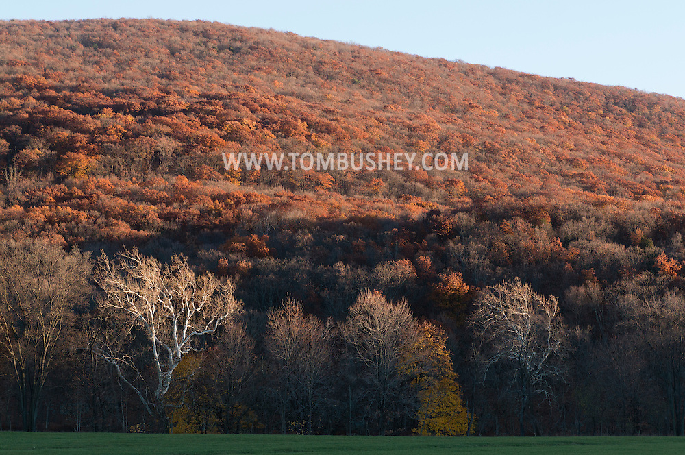 Salisbury Mills, New York - Autumn scenes on Nov. 8. 2015.