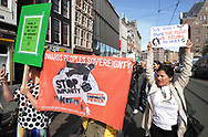 School students and protesters gather during a climate strike demonstration on September 20, 2019 in Amsterdam,Netherlands. Students and supporters joined together on Friday as part of a global mass day of protest to demand action on climate change.