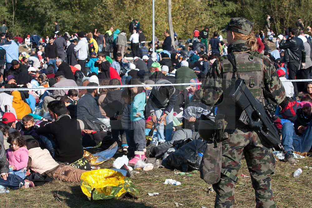 Š Licensed to London News Pictures. 24/10/2015. Rigonce, Slovenia. Migrants are waiting to be escorted to the camps in Dobovo and Brezice, Slovenia at the Slovenian Croatian border.  Slovenian military is guarding migrants at the border crossing. Photo: Marko Vanovsek/LNP