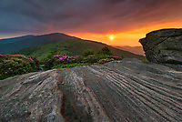 A deep sunset follows an intense rain shower over the Roan Highlands along the state borders of North Carolina and Tennessee.  In June, the Catawba Rhododendron put on quite a show along the high-elevation peaks besides the Appalachian Trail.