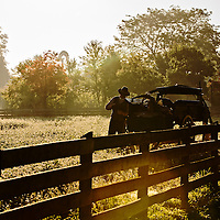 Farmer working at Firestone Farms at Greenfield Village, part of The Henry Ford.  PR Photography by KMS Photography