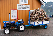Dried Cod fishheads are sent to Nigeria where they are a delicacy. The tiny island fishing village of Sakrisøy is connected by bridge to Reine on Moskenesøya (the Moskenes Island) and to Hamnøy in the Lofoten archipelago, Nordland county, Norway.