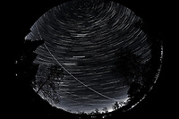 Night Sky Over New Jersey. Composite of images (23:00-23:59)  taken with a Nikon D850 camera and 8-15 mm fisheye lens (ISO 800, 10 mm, f/5.6, 30 sec).