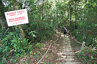 Man walking on a rainforest trail in Frasers Hill, Malaysia.
