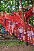 The Greenpeace adventure area  -  The 2017 Latitude Festival, Henham Park. Suffolk 14 July 2017
