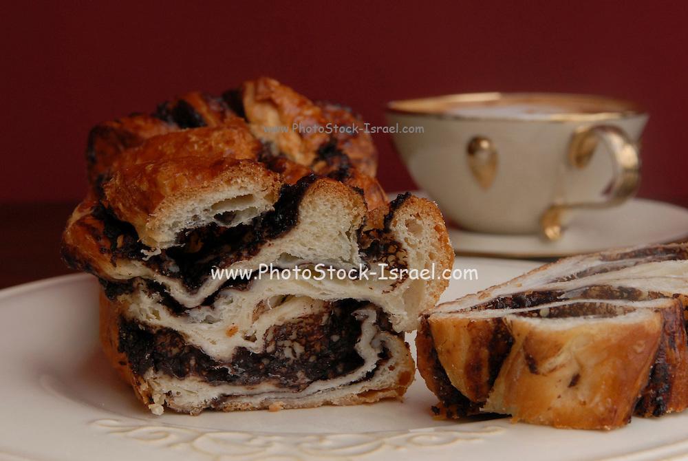 Freshly baked Chocolate yeast cake