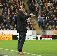 Roberto Martinez of Everton during the Barclays Premier League match at KC Stadium, Hull<br /> Picture by Richard Gould/Focus Images Ltd +44 7855 403186<br /> 01/01/2015