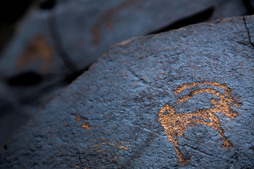 Late Bronze Age petroglyphs are found in the mountains and hills surrounding the Gobi Desert of Mongolia on July 27, 2012. © 2012 Tom Turner Photography