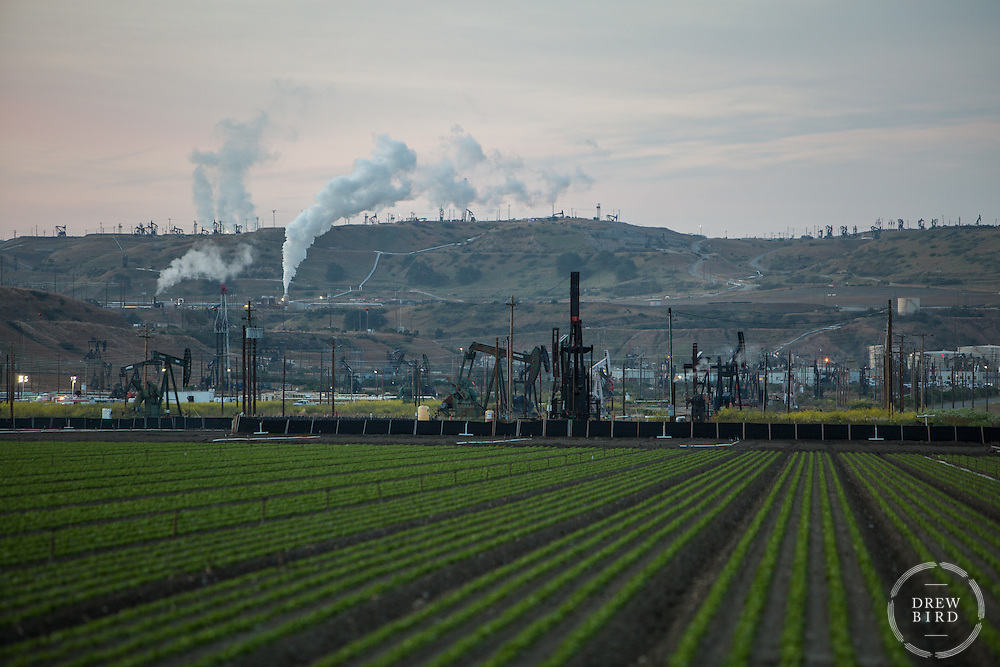 Oil and Agriculture | San Ardos Oil Fields | Climate Stories | Conservation Photographer <br />