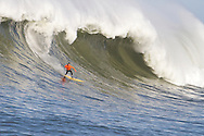 Anthony Tashnik, third place finisher at the 2010 Mavericks Surf Contest, surfs a giant wave during the seond heat - Half Moon Bay, California - February 13, 2010
