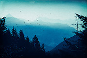 View of the misty Valmalenco/Lombardia/Italy at sunrise - texturized photograph<br />