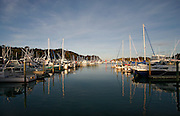 boats in marina with water reflections at tutukaka, northland, new zealand