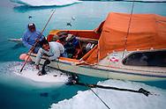 Narwhal hunter, Panikpak, Qaanaq, Greenland