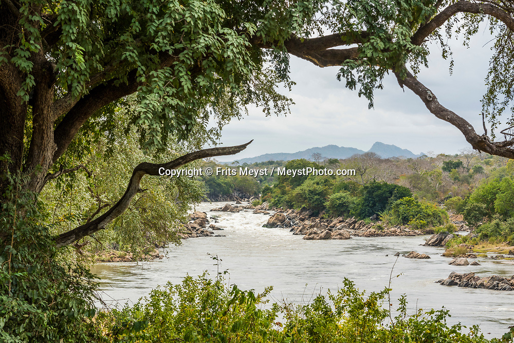 Malawi, July 2017. From the Mkulumadzi Lodge we do game drives in the Majete Wildlife Reserve, one of the outstanding success stories of African conservation. Granted protected status in 1955, it became the subject of extensive poaching in the 1980s and 1990s. But a concerted joint effort since 2003 by the African Parks Network and the Malawi government - including the reintroduction of endangered species - has turned it into a model of sustainable development and biodiversity. Located in the south of Malawi, Majete is an area of 70.000 hectares, part of Africa's Great Rift Valley. The reserve is made up of mature miombo woodlands and granite topped hills that contrast with picturesque river valleys and lush riverine forest. For connoisseurs of wildlife many exciting encounters lie in store, with the chance to view many species including black rhino, leopard, lion, elephant, buffalo, eland, kudu, sable, suni, klipspringer, Lichtenstein's hartebeest and zebra. Malawi is known for its long rift valley and the third largest lake in Africa: Lake Malawi. Malawi is populated with friendly welcoming people, who gave it the name: the warm heart of Africa. In the south the lake make way for a landscape of valleys surrounded by spectacular mountain ranges. Photo by Frits Meyst / MeystPhoto.com