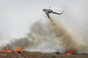 August 16, 2016 - Rancho Cucamonga, California, U.S. - <br /> <br /> A helicopter makes a water drop over the Blue Cut fire burning in the Cajon Pass on Tuesday.<br /> ©Exclusivepix Media