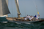 W Class White Wings racing at the Opera House Cup regatta