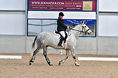 02 - 18th Feb - Dressage