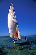 A dhow sails in to the shores of Vilankulos on the Bazaruto Archipelago. Mozambique, Africa.