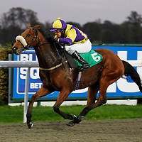 Lucky Art and Justin Newman winning the 5.30 race