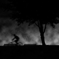 A silhouetted man on a bike blurred by motion rides into the night past a tree