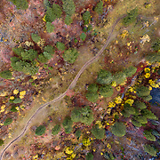 The line of a secret single track in autumn splendor shot from the air.