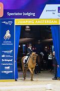 Glasten Krapels - Wisconti<br /> Jumping Amsterdam 2019<br /> © DigiShots