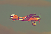 "An Albatros D.Va cruises above Hood Aerodrome, New Zealand. These flight demonstrations and static displays were part of the 2012 commemoration of ANZAC Day by The Vintage Aviator in Masterton, New Zealand. ANZAC (Australian and New Zealand Army Corps) Day is observed to remember ANZACs who served at Gallipoli during World War 1 and more generally all those who served and died for their countries. The Vintage Aviator Ltd is an aircraft restoration company and manufacturer based in New Zealand. On their website, thevintageaviator.co.nz, The Vintage Aviator list their primary aim as ""to build WW1 aircraft, engines and propellers to the same exacting standards they were originally made over 90 years ago"". The Vintage Aviator now boasts a fleet of WW1 aircraft including those originally made by Albatros, Fokker, Sopwith, Bristol, Nieuport and the Royal Aircraft Factory."