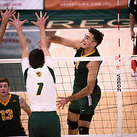 4th year outside hitter Dalton Wolfe (9) of the Regina Cougars in action during Men's Volleyball home game on November 3 at Centre for Kinesiology, Health and Sport. Credit: Casey Marshall/Arthur Images