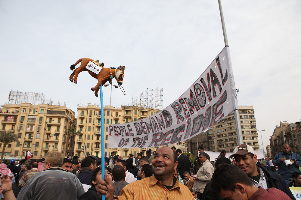 "A protester at Tahrir Square carries a donkey with ""Mubarak"" written on it in Arabic."