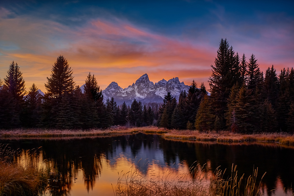 From the ponds at Schwabacher Landing
