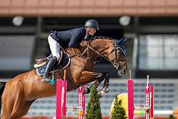 Schellekens Tom, NED, Isabel<br /> Nationaal Kampioenschap KWPN<br /> 7 jarigen springen final<br /> Stal Tops - Valkenswaard 2020<br /> © Hippo Foto - Dirk Caremans<br /> 19/08/2020