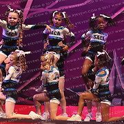 5094_SA Academy of Cheer and Dance - SA Academy of Cheer and Dance Twinkles