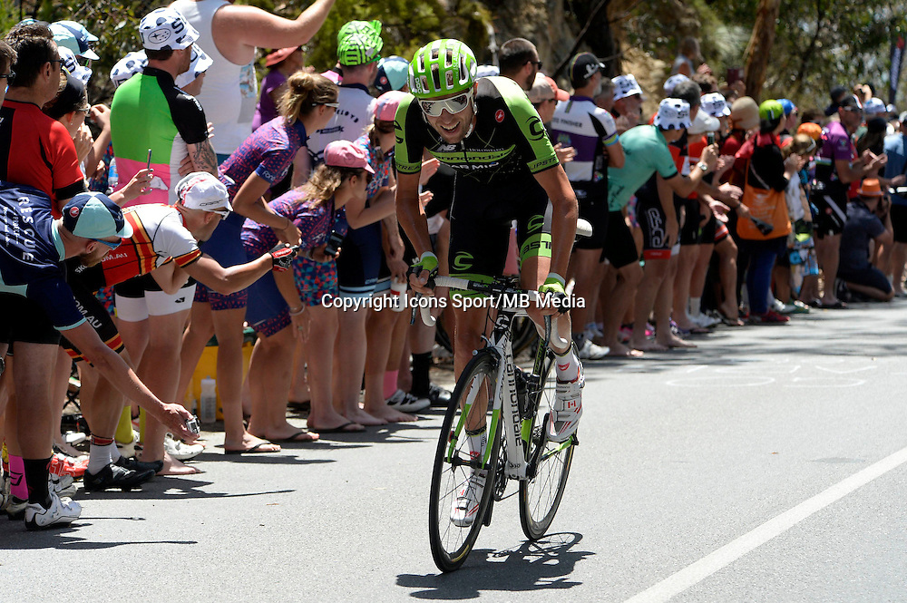 Hesjedal Ryder - Cannondale - Garmin  - 24.01.2015 -  Etape 05 du Tour Down Under 2015<br />Photo : Sirotti / Icon Sport *** Local Caption ***