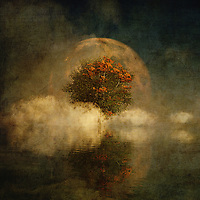 There is something truly unique to this fine art piece from Jan Keteleer. We see a strange blend of images, including a moon. We see a haze of the autumn season covering everything. There is something about this piece that evokes the places we visit in our dreams. There is no question that this piece can also connect us to images and memories that dominated our childhoods. You will love the fact that this piece can work in just about any space you can imagine. It is ideal for anyone who prides themselves on having truly unique taste, when it comes to singular examples of art. <br />