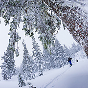 Owen Dudley and Tyler Hatcher skin back up for another run in the Mount Baker backcountry.