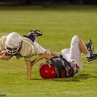 10-7-14 Mighty Mite Gold Bobcats vs Wild Hogs