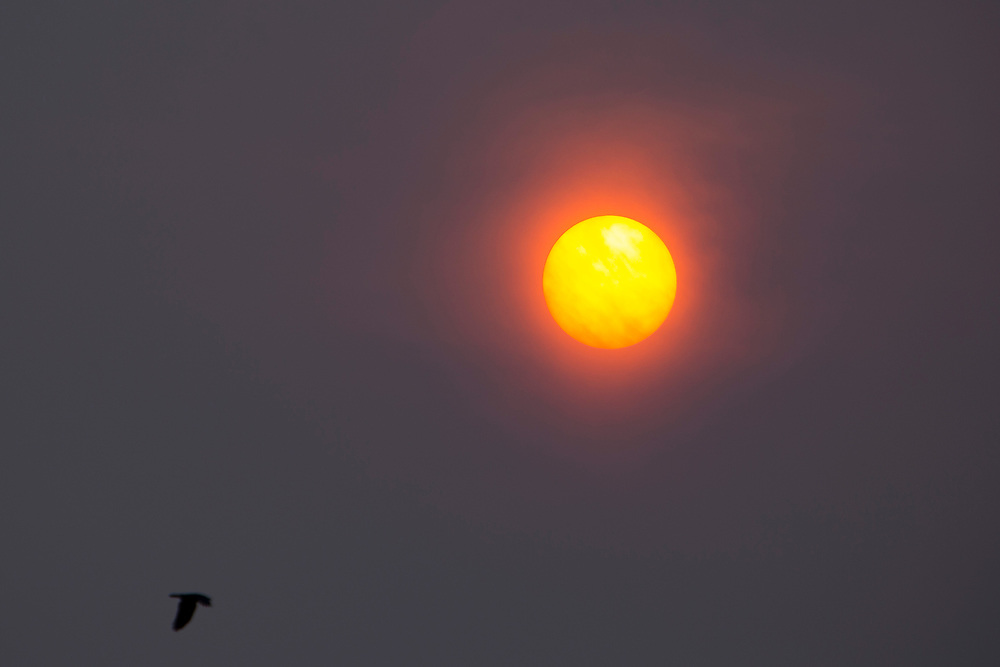A Sahara sun made red by the remains of hurricane Ophelia with dust brought up from the Sahara desert in the skies above Folkestone, Kent.17th October 2017  (photo by Andrew Aitchison / In pictures via Getty Images)