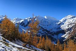 THEMENBILD - Bergpanorama und herbstlich gefärbte Bäume auf der Grossglockner Hochalpenstrasse. Sie verbindet die beiden Bundeslaender Salzburg und Kaernten mit einer Laenge von 48 Kilometer und ist als Erlebnisstrasse vorrangig von touristischer Bedeutung, aufgenommen am 26. Oktober 2015, Bruck a.d. Glocknerstrasse, Oesterreich // Mountain panorama and autumn colored trees. The Grossglockner High Alpine Road connects the two provinces of Salzburg and Carinthia with a length of 48 km and is as an adventure road priority of tourist interest at Bruck a.d. Glocknerstrasse, Austria on 2015/10/26. EXPA Pictures © 2015, PhotoCredit: EXPA/ JFK