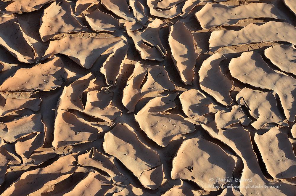 Mud flat on the Parapeti River in Isosog