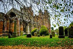 Autumn colour at Melrose Abbey in the Scottish Borders.<br /> <br /> (c) Andrew Wilson | Edinburgh Elite media