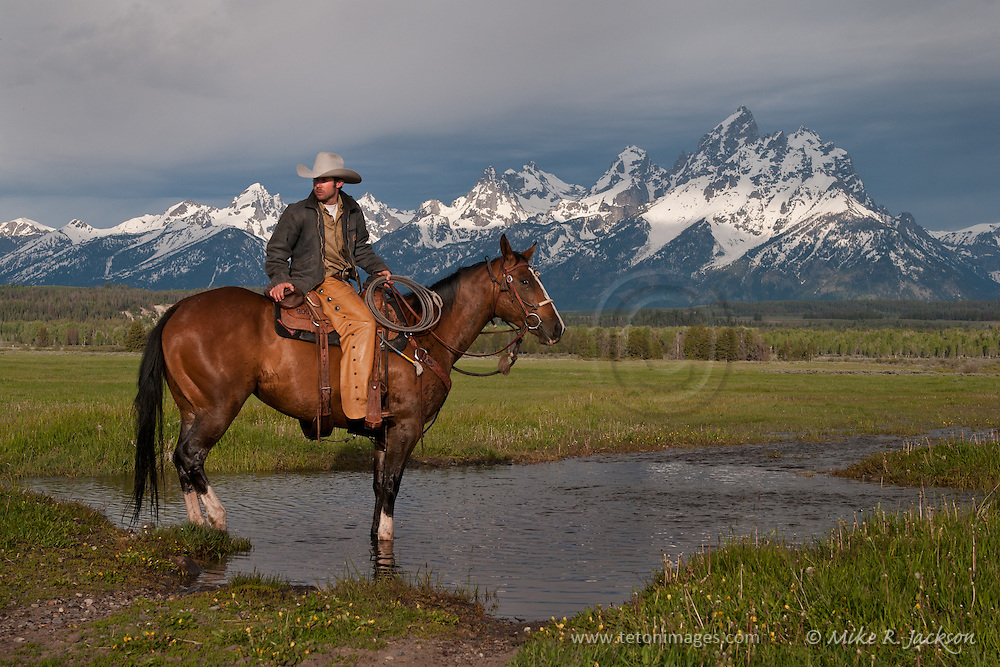 A wrangler and horse waiting in a small creek with distant Grand Teton peaks in historic Jackson Hole, WY